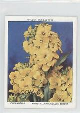 1938 Wills Garden Flowers New Varieties Tobacco Base #6 Cheiranthus Card 1s8