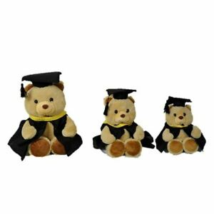 20cm Graduation Canterbury Bear | Frogie Toys