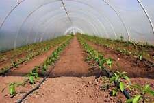 Build your own 10' X 12' PVC Greenhouse (DIY Plans) Fun to build! Save Money!