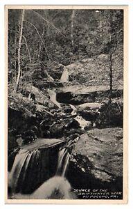 1919 Source of the Swiftwater near Mt. Pocono, PA Postcard *6L(2)11