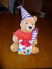 Disney Happy Birthday Party Winnie The Pooh 13 Doll Plush Stuffed Animal Ann