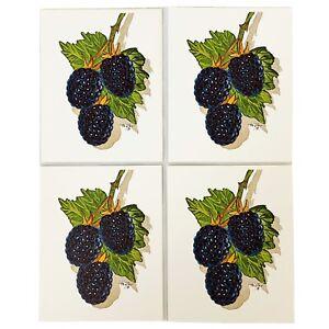 Vintage Art Print Blackberries Fruit Artist Thayer Geme Art Gallery Lot of 4
