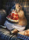 Prairie Dog In Underwear - Avanti Funny Birthday Card by Avanti Press photo