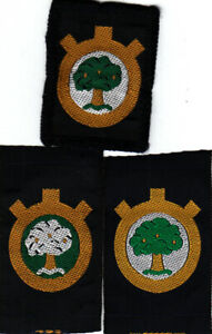 Boy Scout Badges Ext single unamed WALTHAMSTOW DISTRICT ribbon+bound+reverse