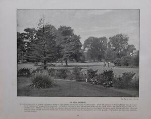 1896 London Aufdruck + Text IN Kew Gärten