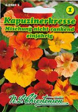 Kapuzinerkresse,nicht rankend,Saatgut,Tropaeolum majus,Blume,Chrestensen,NLC 1