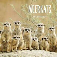 Meerkats 2018 Calendar by Universal Magazines