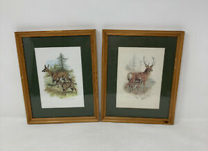 Beautiful Framed Nature Prints 8.5 X 10.4 inches. By J. Crosby Smith