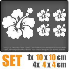 Hibisco blütenset set-10 cm JDM decal sticker coche car blanco discos pegatinas