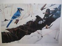 PIERRE FRANCIS SURTES CANADA ART ARTIST BLUE JAY 1987 LIMITED EDITION PRINT