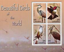 Lesotho 2007 MNH Beautiful Birds of World 4v M/S Herons Hummingbirds Stamps