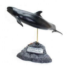 Kaiyoukoubou False Killer Whale Real Figure Fish Carving Hand made From Japan