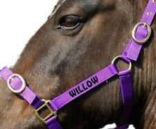 Personalised Embroidered Headcollar All Size & Colours   FROM £6.50