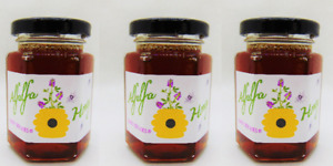 5.5 Ounce Alfalfa Honey - 3 Medium Jars