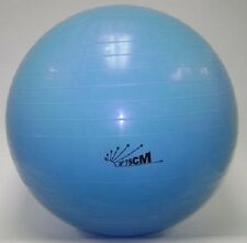 NEW 75cm Burst-resist Exercise Swiss Gym Fitness Ball