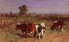 Oil painting johannes hubertus leonardus de haas - cattle grazing in landscape