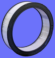 Air Filter Purolator A53198, CA3602