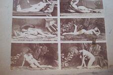 CALAVAS ETUDE DE NUS  TIRAGE ALBUMINE ALBUMEN VINTAGE PRINT 1880 PEINTURE ref21