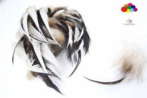 10-100pcs Natural Pheasant Feather 2-4inch/5-10cm Diy Carnival Costume Headdress