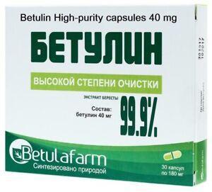 Betulin Betula High purity 40 mg 30 capsules