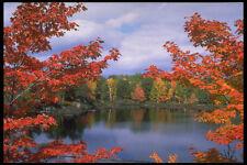 341091 Six Mile Lake Haliburton Ontario A4 Photo Print