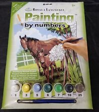 Royal & Langnickel Painting by Numbers Mare & Foal PJS21 Paints FREE SHIPPING