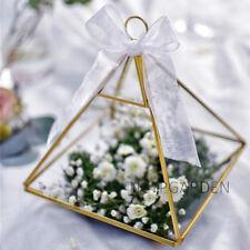 Copper Vertebral Metal Glass Geometric Terrarium Tabletop Box for Wedding