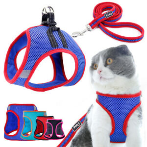 Escape Proof Cat Walking Mesh Harness and Leash Pet Puppy Dog Padded Safety Vest