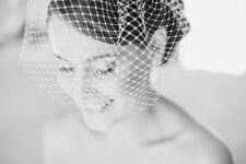 Ivory off white black blush netting french birdcage veil