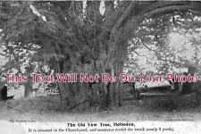 NH 28 - The Old Yew Tree, Helmdon, Northamptonshire - 6x4 Photo