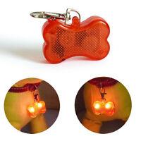 2 pcs Pet Light Collar Flashing Safety Night Pendant Collar Dog Key Chain