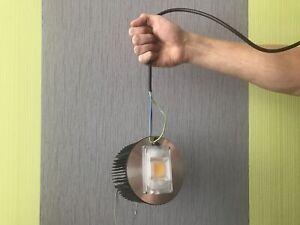 "LED Pflanzenlampe ""Lichtikuss"" 50W Vollspektrum Premium COB Grow LED Nicegrow"