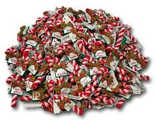 Ganz Candy Cane Christmas Ornament Special People Names -You Pick!