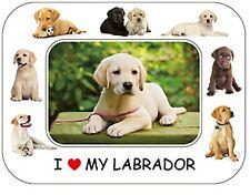"Labrador Dog Gift - Beautiful Flexible Magnetic Photo Frame  8"" x 6"""