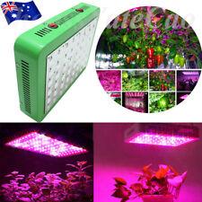240w Full Spectrum LED Plant Grow Light Veg Bloom Lamp Indoor Greenhouse Garden