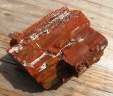 Arizona Petrified Wood Rough Agate Jasper Rock Aquarium Lapidary Bark - #19-01