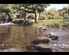 SAINT-LEONARD-des-BOIS (72) MOULIN à eau DUVAL en BORD de SARTHE en 1975