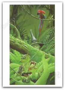 Ex-libris Masbou De Cape et de Crocs perroquet 250 signé 15x21 cm