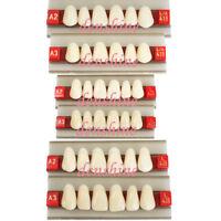 FDA Acrylic Resin Dentist Dental upper Anterior Teeth Shade A2 A3/G419 G425 G438