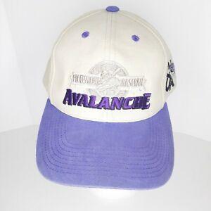 SALEM AVALANCHE MILB FITTED HAT BASEBALL CAP ADJUSTABLE SUEDE BEIGE PURPLE