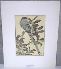 Imao Keinen Antique 1892 Japanese Color Woodblock Bird Art Print #29 W/Mat 10X14