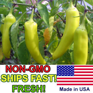 50+ Sweet Banana Pepper Seeds | Non-GMO | Fresh Pepper Garden Seeds