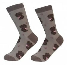 CHOCOLATE LABRADOR Socks-One Size Fits Most-Women's 5-11 Men's 6-10