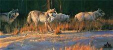 Border Patrol by Nancy Glazier Wolves Print 35x16