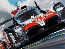 Fernando Alonso 24hr Le Mans Toyota Giclee