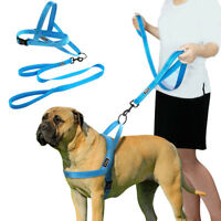 Reflective Stitching Dog Harness and Leads No Pull for Small Large Dog XXS-L