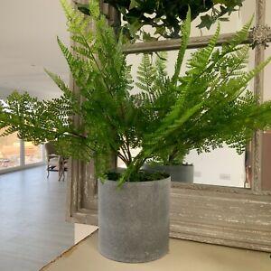 Green Fern Artificial Plant Contemporary Gisela Graham Bathroom Plastic Ming