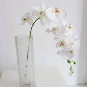 Orchidée Phalaenopsis géante  fleur artificielle composition  décoration mariage