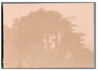 Madagascar, Photo de groupe sous les arbres  Vintage citrate print.  Tirage ci