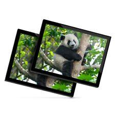 2 x Glass Placemats 20x25 cm - Cute Panda Bear Sitting in Tree  #21990